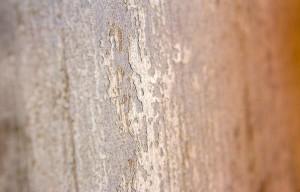 fibra di cemento